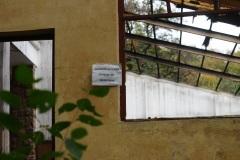 Pe-linia-galbena-Cabana-Pionierilor-Raluca-T-18